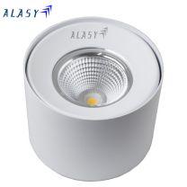 Đèn LED Ốp Trần 10W